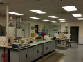 office lab 2